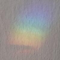 regenboogjes op de muur